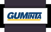 guminta