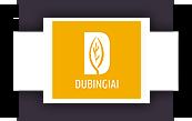 Dubingiai