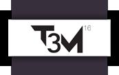 t3m16
